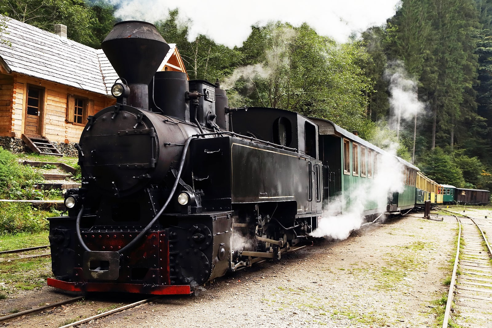 Mocanita touristic train - The last forestry steam working train